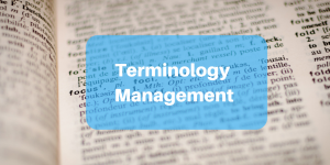 terminology management3