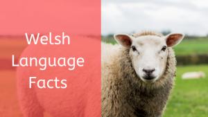 Welsh language facts3