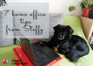 7 home office tips from Steffy